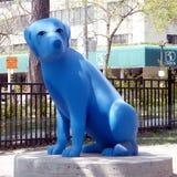 De blauwe hond 2010 van Toronto Royalty-vrije Stock Afbeeldingen
