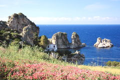 De blauwe Middellandse Zee van Bloemen Royalty-vrije Stock Afbeelding