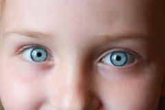 De blauwe ogen die van de tiener omhoog staren Stock Foto