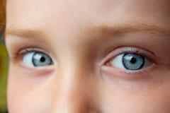 De blauwe ogen die van de tiener omhoog staren Stock Foto's