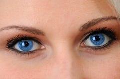 De blauwe Ogen is een spiegel van ziel Stock Foto