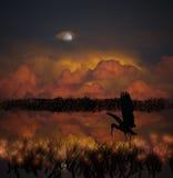 De blauwe Reiger jacht bij nacht Royalty-vrije Stock Afbeelding