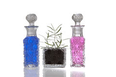 De blauwe roze flessen van het kristalglas royalty-vrije stock afbeelding