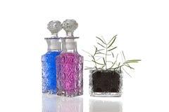 De blauwe roze installatie van glasbuikflessen Stock Foto