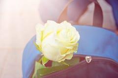 De blauwe Rugzak met Tedere Wit nam op Stadsbestrating toe Romantisch Valentine Adventure Traveling Concept Levensstijlbeeld royalty-vrije stock foto's