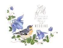 De blauwe samenstelling van de bloemvogel Royalty-vrije Stock Foto