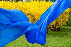 De blauwe stof ontwikkelt zich in de wind royalty-vrije stock afbeelding