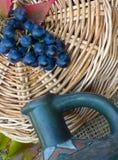 de blauwe tak van druif Royalty-vrije Stock Afbeelding