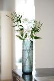 De blauwe Vaas van het Glas Royalty-vrije Stock Foto's