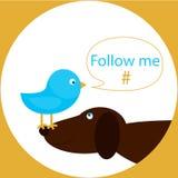 De blauwe vogel op de hondneus met toespraakbel volgt me hashtag Stock Fotografie