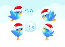 De Blauwe vogels van Kerstmis Stock Afbeelding