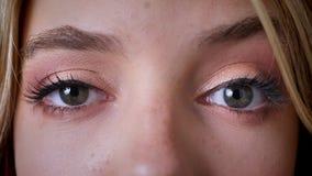 De blauwe vrouwelijke ogen, onderzoeken de camera, make-up, knipoogje stock video