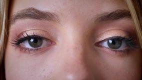 De blauwe vrouwelijke ogen, onderzoeken de camera, make-up, knipoogje stock footage