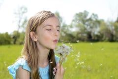 De blazende paardebloemen van het meisje Stock Foto's
