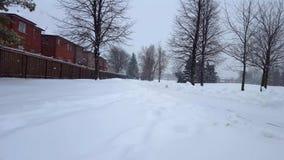 De Blizzard van het sneeuwonweer in Voorstad Openbaar Park Sneeuwende Aardscène in Woonwijk In de voorsteden Sneeuw het Noordenwe stock footage