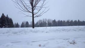 De Blizzard van het sneeuwonweer in Voorstad Openbaar Park Sneeuwende Aardscène in Woonwijk In de voorsteden Sneeuw het Noordenwe stock video