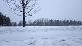De Blizzard van het sneeuwonweer in Voorstad Openbaar Park Sneeuwende Aardscène in Woonwijk In de voorsteden Sneeuw het Noordenwe stock videobeelden