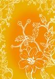 De bloei van bloemen Stock Afbeeldingen