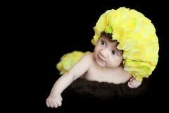 De bloei van de baby stock afbeelding