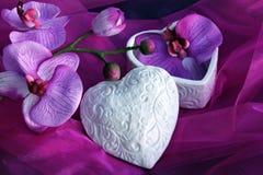 De bloei van orchideeën Stock Afbeelding