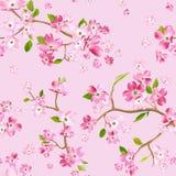 De bloeiende Lente bloeit Patroonachtergrond Naadloze Manierdruk Stock Afbeeldingen