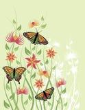 De Bloem Background_Green van de vlinder Stock Foto's