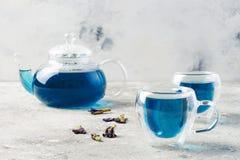 De bloem blauwe thee van de vlindererwt Gezonde detox kruidendrank Royalty-vrije Stock Foto's