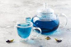 De bloem blauwe thee van de vlindererwt Gezonde detox kruidendrank Royalty-vrije Stock Afbeelding