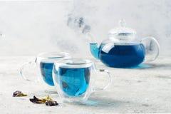 De bloem blauwe thee van de vlindererwt Gezonde detox kruidendrank Royalty-vrije Stock Afbeeldingen