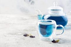 De bloem blauwe thee van de vlindererwt Gezonde detox kruidendrank Stock Fotografie