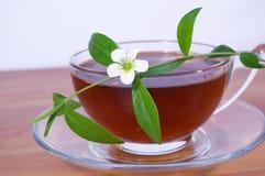 De bloem en de kop thee van de lente Stock Foto