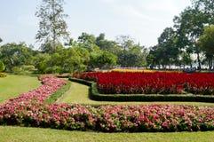 De bloem gaden royalty-vrije stock afbeeldingen
