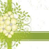 De bloem grunge achtergrond van Nice Stock Foto