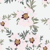De bloem naadloos die patroon van de Wildflowerpioen op heldere achtergrond wordt geïsoleerd stock illustratie