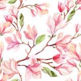 De bloem naadloos patroon van de waterverfmagnolia royalty-vrije illustratie