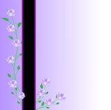 De bloem nam kaart toe Stock Foto's