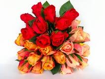 De bloem, nam toe - bloei, kies bloem uit, nam de enige installatie, toe Royalty-vrije Stock Fotografie