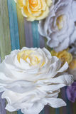 De bloem op de achtergrond Stock Foto