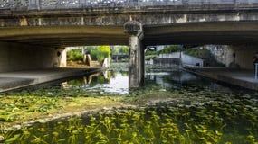 De bloem riverwalk gebied van de parelonderdoorgang stock foto's