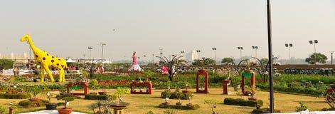 De bloem toont - India Royalty-vrije Stock Afbeeldingen