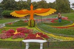 De bloem toont Landschapspark in Kiev Stock Fotografie