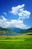 De Bloem van China Qinghai en het Landschap van het Gebied stock afbeelding