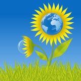 De bloem van de aarde Stock Foto
