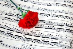 De bloem van de anjer met bladmuziek 2 Stock Foto
