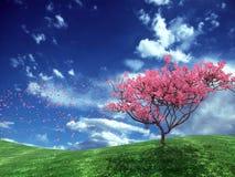 De bloem van de boom Royalty-vrije Stock Foto