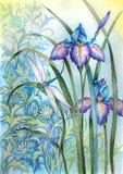 De bloem van de iris en een libel Stock Afbeeldingen
