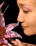 De bloem van de lelie Stock Afbeeldingen