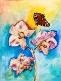 De bloem van de orchidee met vlinder het schilderen Royalty-vrije Stock Foto