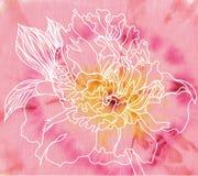 De bloem van de pioen op batikachtergrond Stock Foto's