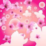 De bloem van de pruim Stock Fotografie